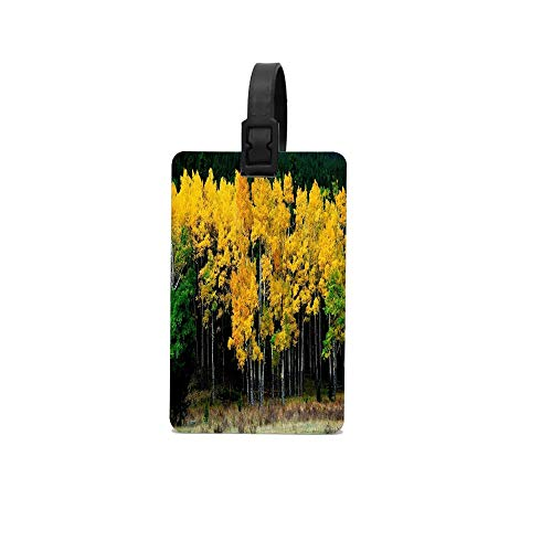 (Rdkekxoel Birches Autumn Leaves Yellow Carry On Unisex Funny Luggage Tags School Bags Tags)