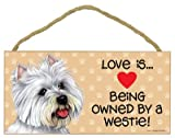 Love is being owned by a Westie 5