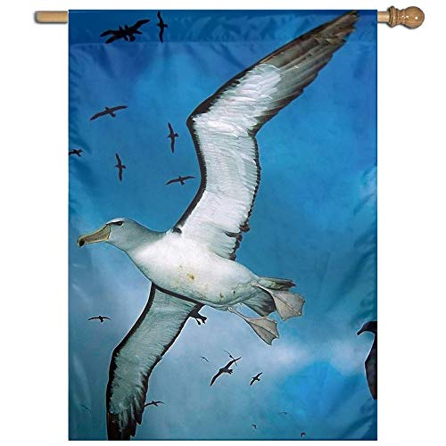YUANSHAN Single Print Home Garden Flag Seagull Birds Flying Blue Sky Polyester Indoor/Outdoor Wall Banners Decorative Flag 27