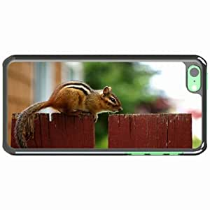 iPhone 5C Black Hardshell Case chipmunk fence sitting animal Desin Images Protector Back Cover
