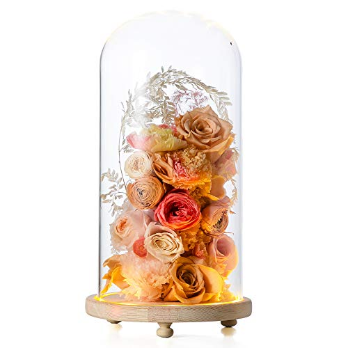 NCYP Glass Dome with LED Display Light Wood Base Clear Cloche Bell Round for Rose Flowers Model Figurine Home Table Decoration Terrarium Wedding Centerpiece DIY Large D5.9 x H11.8