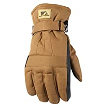 Wells Lamont 1075L Insulated Duck Fabric Cold Weather Work Gloves, Large, Brown