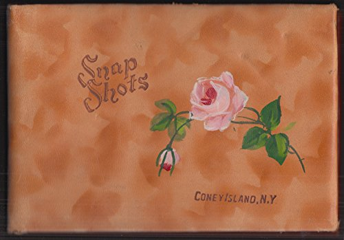 Coney Island NY Snapshot album hand-painted rose-motif leather ca 1940s ()