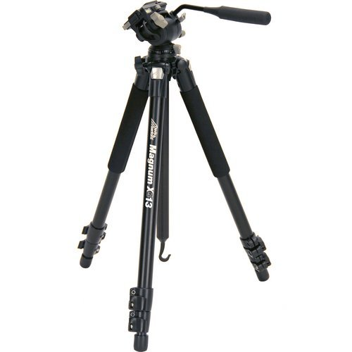 Davis & Sanford MAGNUMXG13 Magnum Grounder Tripod with FX13 Head for Cameras