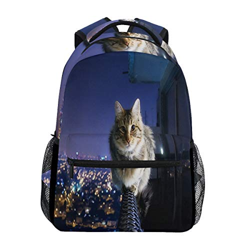 Women/Man Canvas Backpack Special Cool Cat In The Night Zipper College School Bookbag Daypack Travel Rucksack Gym Bag For Youth