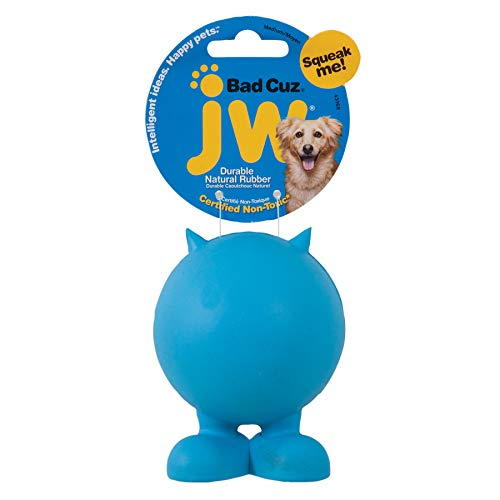 JW Pet Company Bad Cuz Dog Toy,