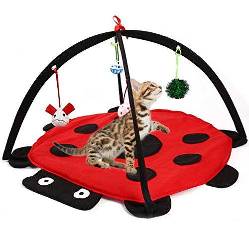 Alapa Cat Activity Center with Hanging Toy Balls, Mice More - Helps Cats Get Exercise Stay Active Best Cat Toys, Outdoor Bed Play Tent for Cat (Cat Food Tent)