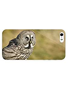 3d Full Wrap Case For Iphone 5/5S Cover Animal Gray Owl69