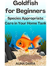 Goldfish for Beginners – Species Appropriate Care in Your Home Tank
