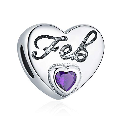 (February Birthstone Charms Dark Purple Crystal Charm Beads Love Heart 925 Sterling Silver Charms for Bracelets, Birthday Gifts for Women Girls)