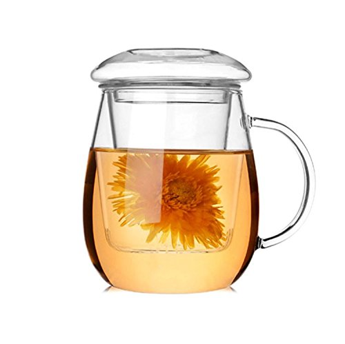 iRSE Glass Tea Infuser Cup with Glass tea strainer and glass lid, Borosilicate Glass, durable heat resistant hot drink for loose leaf tea herbs herbal detox Dishwasher safe 17 oz, 500 ml (Leaf Dish Glass)