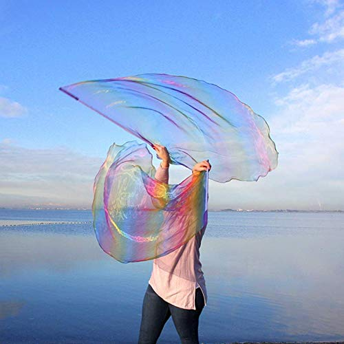 Prophetic FAITHFUL PROMISES Worship Flags, Praise & Worship Dance Flags for Christian Dance in Church, Beautiful, Large, Single Layer, Angel Wing, Flexible Poles, 2ct from Catch the Fire Worship Flags