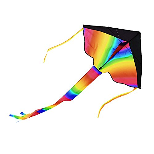 Pagacat Kids Large Rainbow Delta Kite Multicolored Bird Shape Delta Kite Easy Flyer Outdoor Family Wing Span Delta Rainbow Kite with Long Tail, US Stock Stock Applique