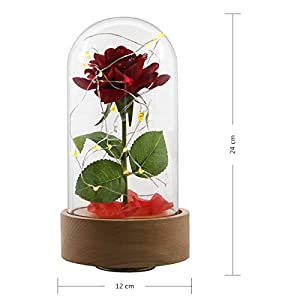 Ehugos Beauty & The Beast Pink Silk Rose and Led Light with Fallen Petals in a Glass Dome on a Wooden Base Gift for Valentine's Day Anniversary Birthday Wedding 5