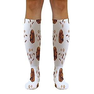 Funny Knee High Socks Sussex Spaniel Dog Breed Style B Tube Women & Men 1 Size 38