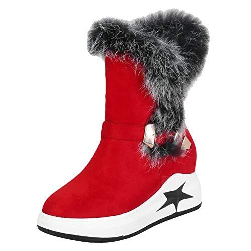 Stivaletti Stivaletti Fashion Donna Rosso Boots Boots MissSaSa f67wqpq