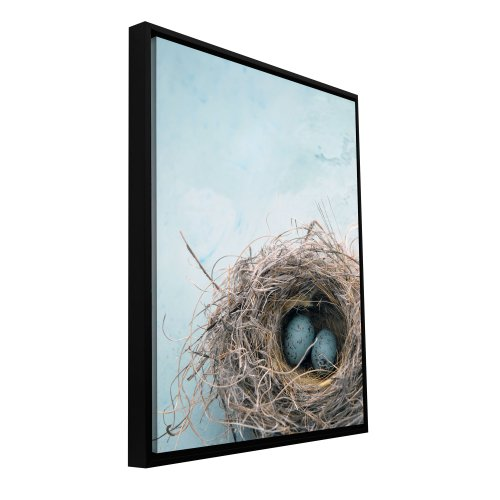 ArtWall Elena Ray 'Blue Nest' Floater Framed Gallery-Wrapped Canvas 32 by 48, Image: 30.5 by 46.5-Inch