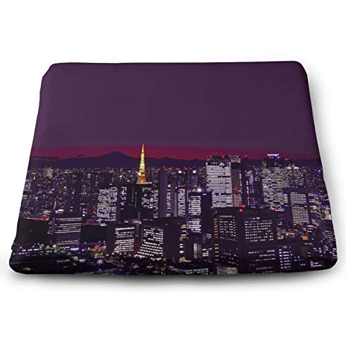 WEIPING LF Twilight City Memory Foam Seat Cushion, Chair Pad