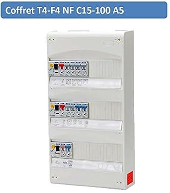 Caja eléctrica - Eaton t4-f4 NF C15 - 100 A5 - 079900162: Amazon.es: Industria, empresas y ciencia