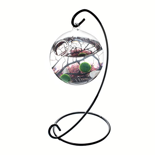 NewDreamWorld Table Centerpiece Marimo Aquarium Kit - 2 x 10 mm Aquatic Living Moss Balls Small Stones of Purple Glass Black Fan Coral Branch in a 3.5 Hanging Orb Terrarium with Bent Metal Stand