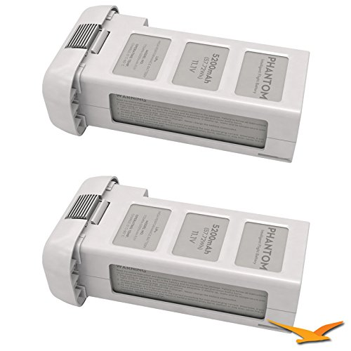 DJI Battery for Phantom 2 and Phantom 2 Vision (Two Pack)