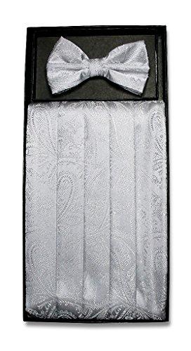 Silver Cummerbund Set (Cumberbund & BowTie SILVER GRAY PAISLEY Color Men's Grey Cummerbund Bow Tie Set)