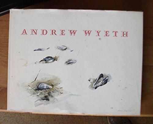 Andrew Wyeth Boston Museum (Rathbone Boston)