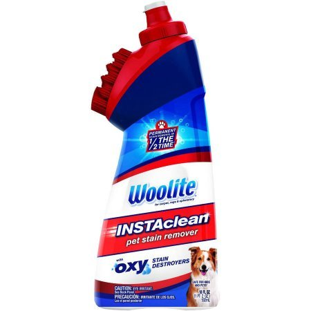 Woolite InstaClean Pet Stain Remover, 18 fl oz, 1740