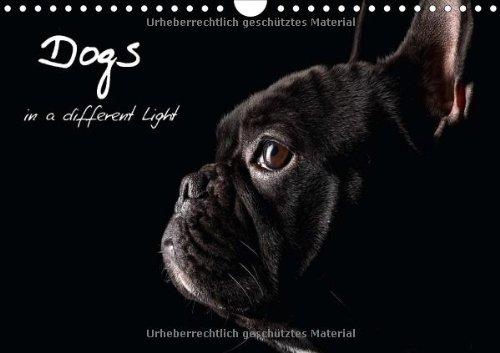 Dogs in a different Light (Wandkalender 2014 DIN A4 quer): Momente für die Ewigkeit (Monatskalender, 14 Seiten)
