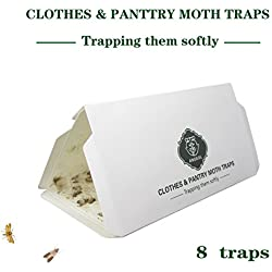 Pantry Moth & Cloth Moth Traps Safe, Nontoxic & Odor Free, Hybrid Pheromone Attractant Traps for Common kitchen moth, pantry moth, grain moth, cloth moth - 4 Pack of 8 Traps