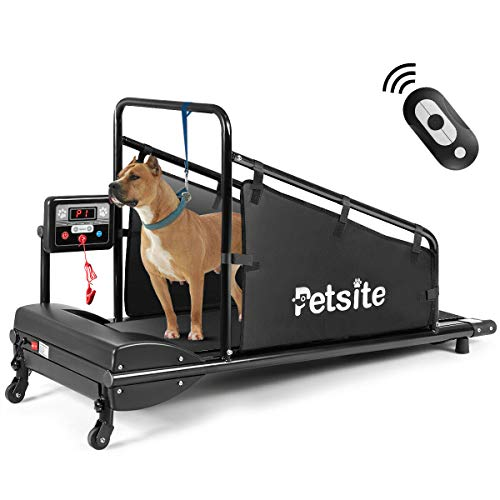 Best Treadmill for Large Dogs: Goplus Dog Treadmill Review