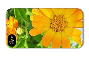Hipster iPhone 4 for cheap cover calendula flower PC 3D for Apple iPhone 4/4S