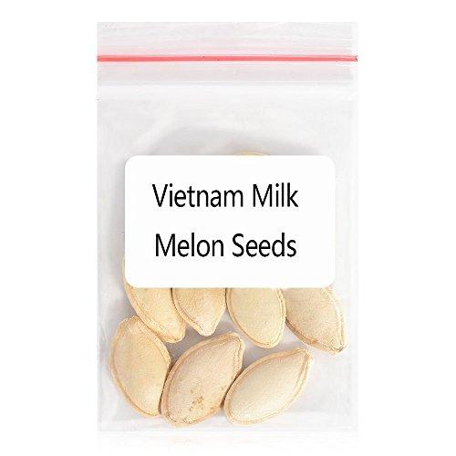 Rare Vietnam Milk Melon Seeds Vegetables Fruit Bonsai Plants Garden Plant