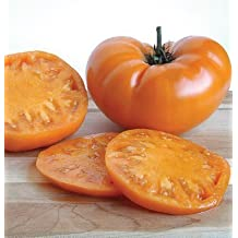 Legend Online Garden Seeds Tomato Beefsteak Yellow Brandywine D714A (Orange) 25 Organic Heirloom Seeds