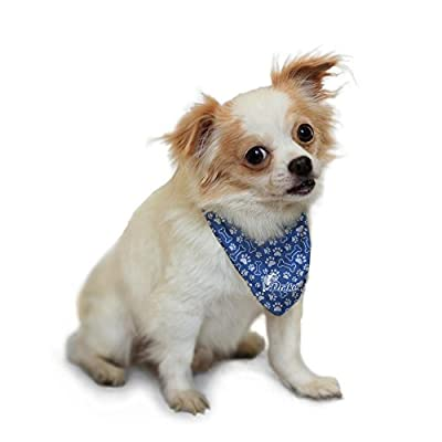 Drake University Bulldogs Pet Bandana Bones