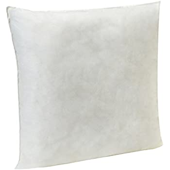 AmazonBasics Pillow Insert - 20-Inch Square, Single