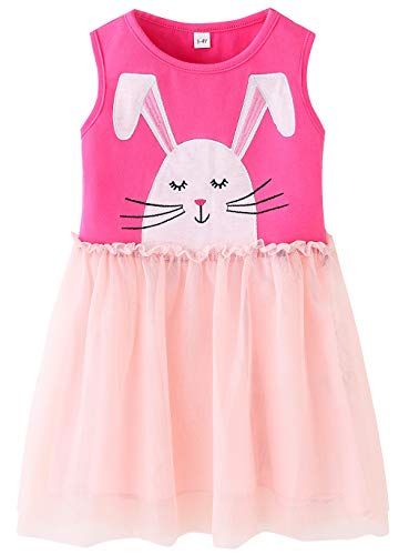 Fiream Baby Girls Pink Eater Bunny Princess Dresses in Soft Tulle(JP012,9-10Y) ()