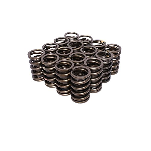 (Competition Cams 925-16 Dual Valve Spring)