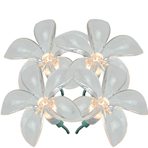 Set of 20 Plumeria Flower Clear Novelty Christmas Lights - Green -