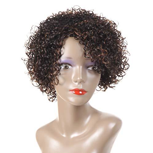 HUA Human Hair Wigs for Black Women 8 Inch Short Curly Wigs Brazilian Human Hair Curly Wigs Kinky Curly Human Hair Wigs…