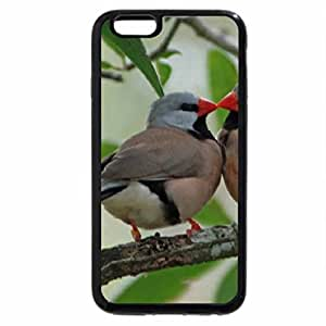 iPhone 6S Plus Case, iPhone 6 Plus Case, Kissing Birds