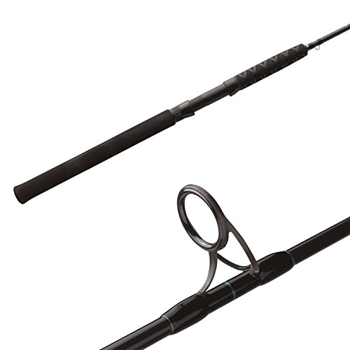 - Shimano Trevala F 6'3 MH Saltwater Jigging Spinning Rod