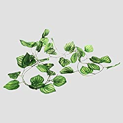 Ray-JrMALL Reptile Artificial Fruit Plants Vines Landscaping Ornament Leaves Non-Toxic Habitat Plastic Decoration 2M