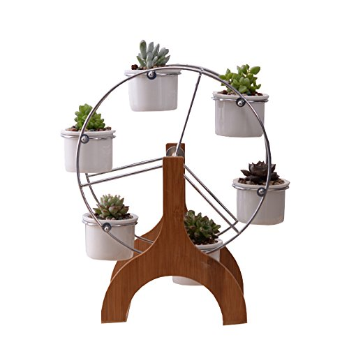 Cute 12 inch Ferris Wheel Shaped Bamboo Flower Pot Stands Holder,with 6 Round Ceramic Succulent Plant Pots,for Home Garden Office Desktop Decoration (Ferris Wheel Decoration)