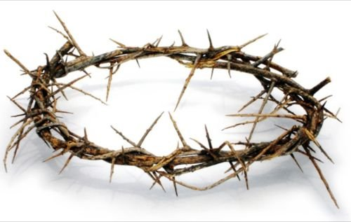 CROWN OF THORNS BETHLEHEM JERUSALEM HOLY LAND aprox 7.5