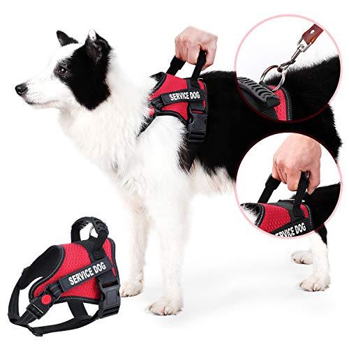 Dihapet Dog Harness, Service Dog Vest,Breathable Working Dog Harness for Easy Walking Training ()