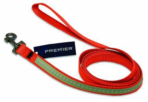Premier Nite Lite Glow-in-the-dark Dog Leash, Small 3/4 x 6 Orange