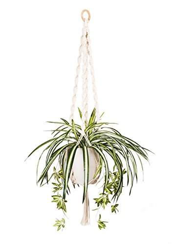 Tulla Macrame Outdoor Hanging Planter product image