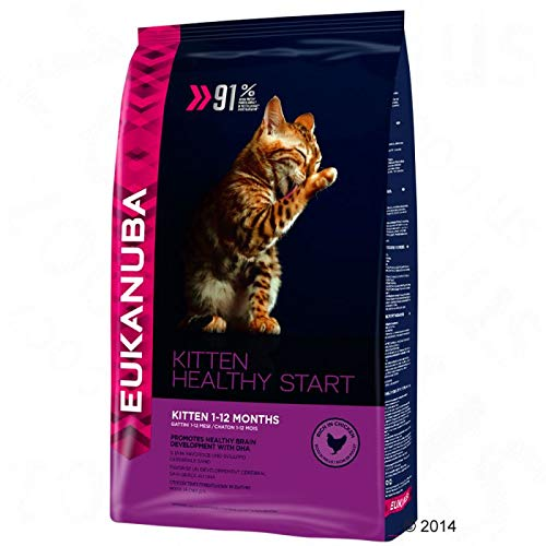 Complete Eukanuba Healthy Start Kitten Dry Food for Growing Cats from 1 to 12 Months Old, Economy Pack 2x 4 kg