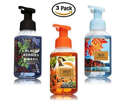 Bath & Body Works Crisp Morning Air + Sweet Cinnamon Pumpkin + Blackberries and Basil, Gentle Foaming Hand Soaps (3 Pack)  (Scented Soap Bath)